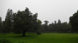 Park in Peking